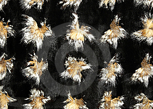 Fox And Mink Fur Royalty Free Stock Image - Image: 16463626