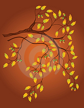Oak Leaves Background Royalty Free Stock Photo - Image: 16468555