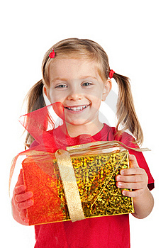 Little Girl Wih The Present Stock Photography - Image: 16479402