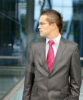 A Young Businessman In Formal Clothes Stock Photos - Image: 16480363