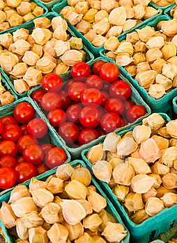 Tomatoes And Ground Cherries Royalty Free Stock Image - Image: 16483136