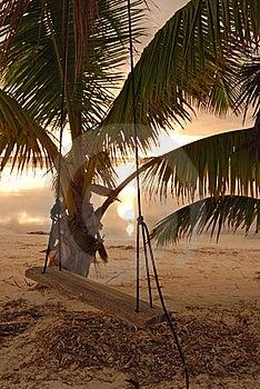 Swing At Sunrise On Coast Of Belize Royalty Free Stock Images - Image: 16489239