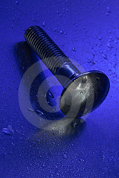 Blue Screw With Reflection Royalty Free Stock Photography - Image: 1654157