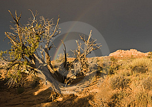 Rainbow Over Arches National Park Stock Images - Image: 16505674