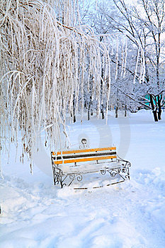 Bench In Winter Park Royalty Free Stock Photo - Image: 16513915