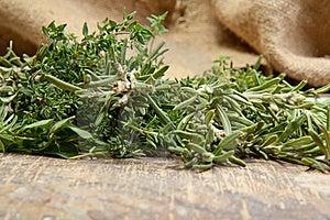 Fresh Herbs Royalty Free Stock Photos - Image: 16515078
