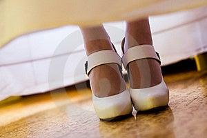White Brides Stock Photos - Image: 16516643