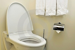 Generic Toilet Seat And Bowl Stock Photo - Image: 16521900
