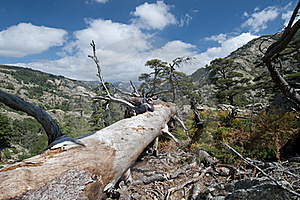 Hiking At Corsica Royalty Free Stock Photography - Image: 16524957