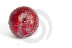 Single Red Plum Royalty Free Stock Image - Image: 16525436