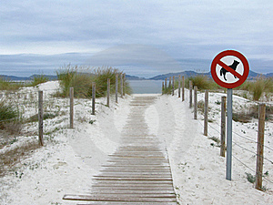 No Dogs Are Allowed On The Beach Stock Image - Image: 16525731