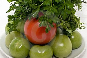 Tomatos And Fresh Herbs Royalty Free Stock Photo - Image: 16540485