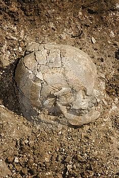 Grave Of Human Skeleton  Royalty Free Stock Image - Image: 16547306