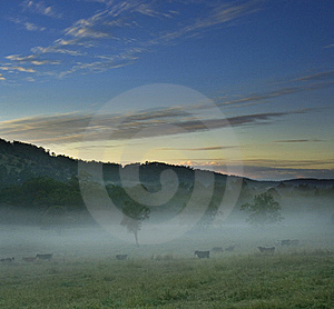 Rural Landscape With Foggy Scene Stock Photos - Image: 16551993