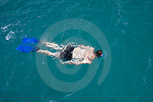 A Man Snorkeling Stock Images - Image: 16562924