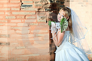 Bride Royalty Free Stock Photography - Image: 16565097