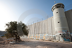 Olive Tree And Israeli Separation Barrier Royalty Free Stock Photography - Image: 16574997