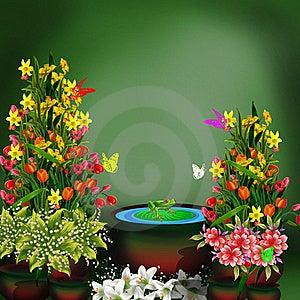 Green Frog Royalty Free Stock Image - Image: 16575056