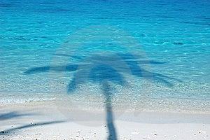 Beach Stock Photo - Image: 16579170