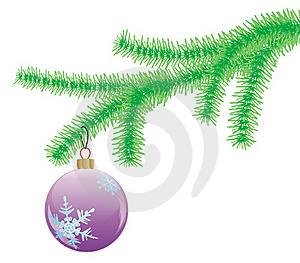 Fir Branch Stock Photography - Image: 16580022