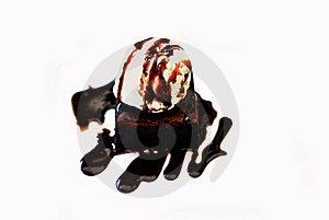 Vanila Icecream With Chocolate Cake Isolated Royalty Free Stock Photo - Image: 16593575