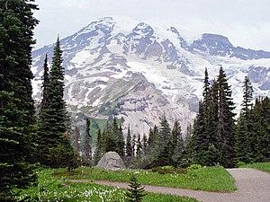 Mount Rainier stock photo. Image of beautiful, blue, alpine - 1665486