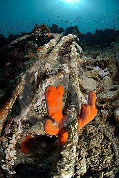 Wreckage From A The Lara Shipwreck Stock Photos - Image: 16601903