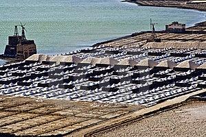 Salt Piles On A Saline Exploration Stock Images - Image: 16613074