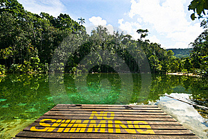 Clear Pond Stock Photo - Image: 16622960