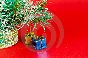 Christmas Tree Royalty Free Stock Photography - Image: 16634057