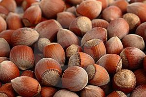 Nuts Background Stock Images - Image: 16637774