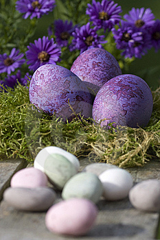 Easter Eggs In Pastel Color Royalty Free Stock Photo - Image: 16637995
