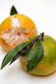 Mandarin Orange Stock Photo - Image: 16643180