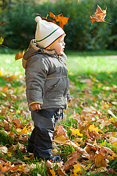 Kid In Autumn Wood Stock Photos - Image: 16643203