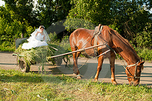 Bride In The Old Carriage Royalty Free Stock Images - Image: 16647159