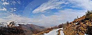 Firs Snow On Mountain Ridge Royalty Free Stock Photos - Image: 16652258