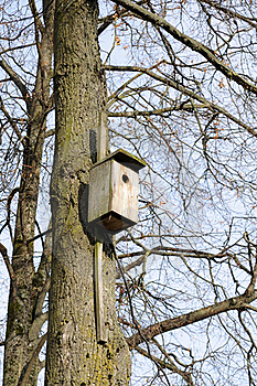 Wooden Birdhouse On Tree Stock Images - Image: 16666824