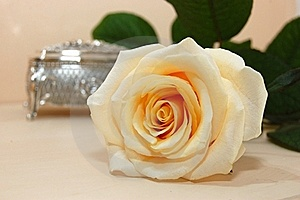 Jewelry Box With White Rose Stock Image - Image: 16673231