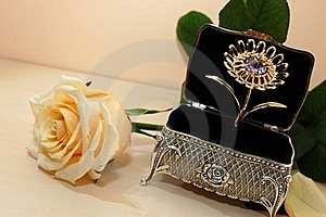 Jewelry Box With White Rose Stock Photography - Image: 16673242