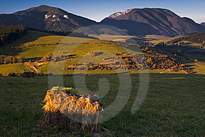 Hay Package Royalty Free Stock Photo - Image: 16699055