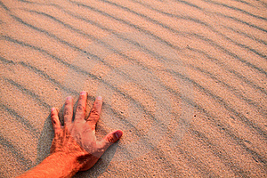 Hand On Beach Royalty Free Stock Image - Image: 16699876