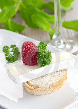 Appetizer With Cheese Royalty Free Stock Photo - Image: 16700365