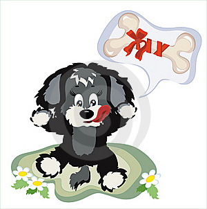 Puppy Royalty Free Stock Images - Image: 16703089
