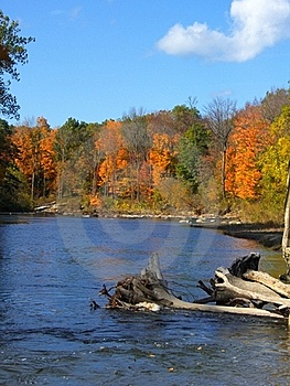 Nature's Comfort Creek Royalty Free Stock Photos - Image: 16708598