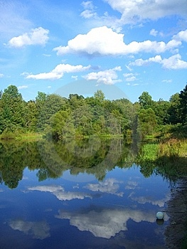 Mirrored Images Of A Pond Royalty Free Stock Photos - Image: 16708648