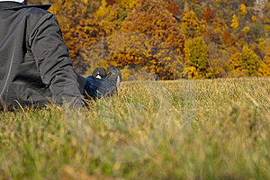 Young Male On The Grass Stock Image - Image: 16710301