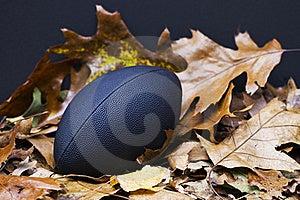Autumn's Big Game Stock Photos - Image: 16722603