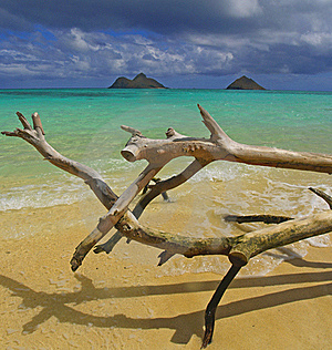 Lanikai Hawaii Ocean Panoramic Royalty Free Stock Image - Image: 16725646