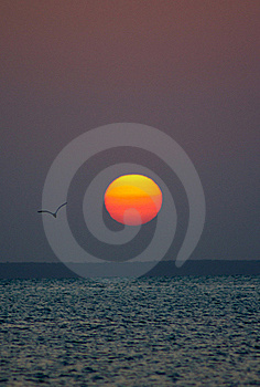 African Sunset Stock Photos - Image: 16726823