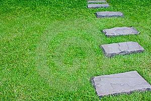 Walk Way On Grass-1 Stock Photos - Image: 16733423